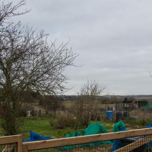 DK 2 Winter allotments